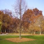 Kehrwoche Schlosspark Stuttgart 2012